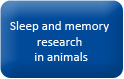 Button_homepage_Sleep and memory research in animals
