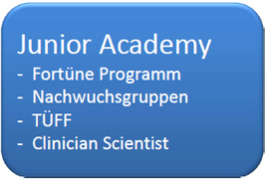 Fortüne-Programm
