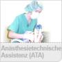 ATA_124