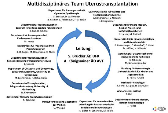 Uterustransplantation_Team_550x370