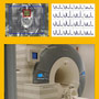 Visual Veranstaltung Proton MR Spectroscopy in Neuroradiological Diagnostics.